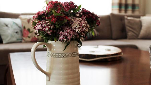 <a href='https://www.emlaktasondakika.com/haber-ara/?key=evde+%c3%a7i%c3%a7ek'>evde çiçek</a>