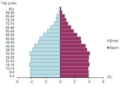 nüfus piramidi