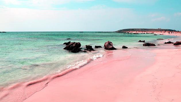 Pink Sands Beach-Bahamalar, Karayipler