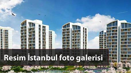 resim istanbul orman