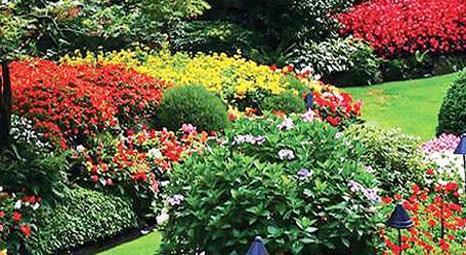 Türk usulü 'hobi bahçeciliği' yayılıyor