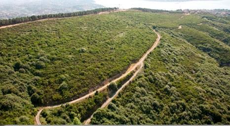 Beykoz Karlıtepe Mesire Alanı ve Seyir Kulesi projesi hayata geçiriliyor!