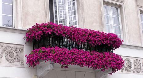 Balkonlar evimizin hatta hayatımızın bir parçası oldu!