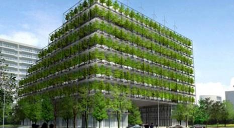 Mimar Sinan Üniversitesi, yeşil bina sertifikasyonu sistemini 7 Ocak'ta tanıtacak