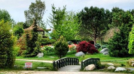 Botanik  Bursa'da 300 bin metrekarelik alana botanik park yapılacak