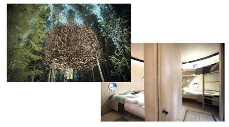 treehotel isveç