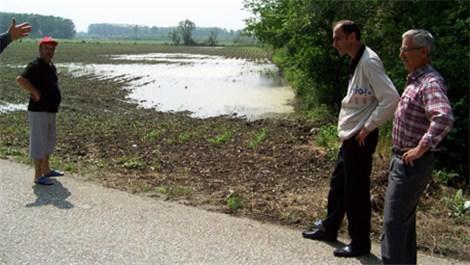 Erenler tarım arazileri