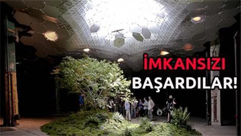 yeraltı parkı, ekolojik, new york,park, tasarım, yeşil