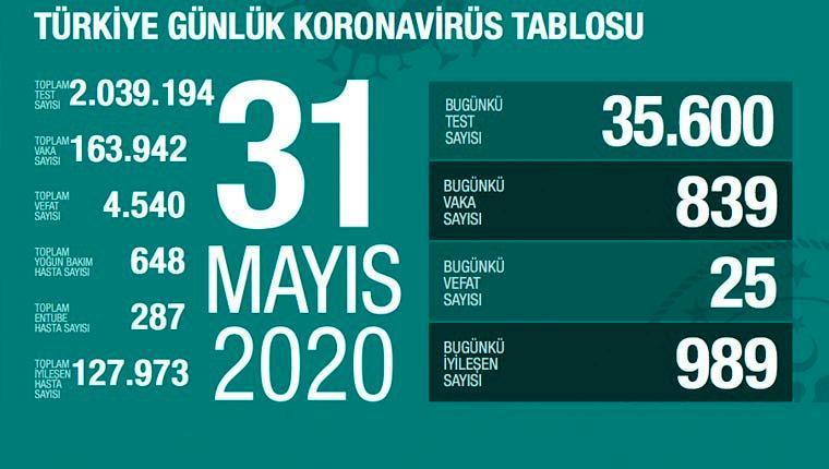 koronavirüs 31 mayıs