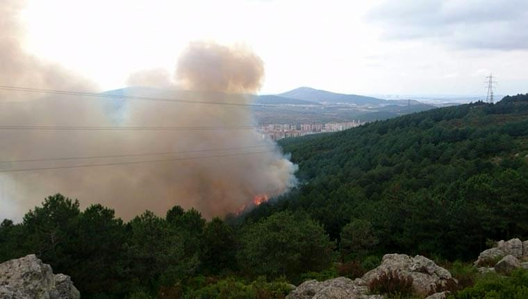 Aydos orman yangını havadan görüntülendi