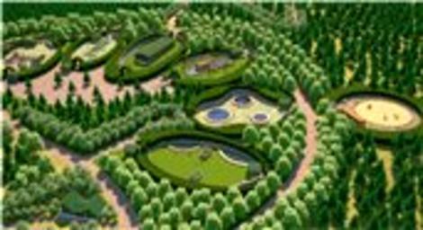 Uluslararası Kent Ormanı