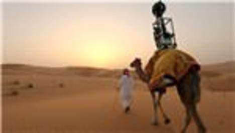 deve üstünde google street wiew çekimi