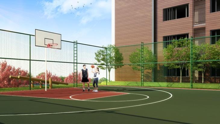 basket sahası