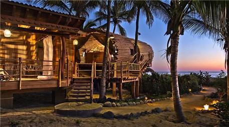 Güneş enerjili ağaç evler!