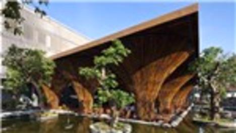 En güzel bambu kullanımları