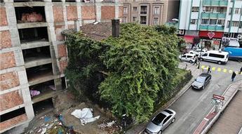Rize'deki sarmaşık kaplı ev görenleri şaşırtıyor