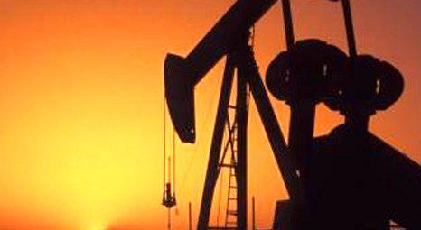 Çukurova Holding Kuzey Irak'ta petrol arayacak!
