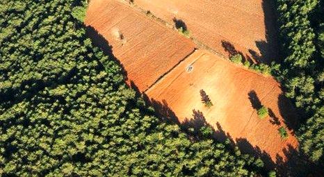 Silivri, Çatalca ve Beykoz'da 6 bin hektar 2B kurbanı!