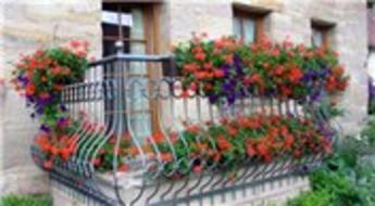 Hayatın lüksünü balkon bahçelerinde arıyoruz!