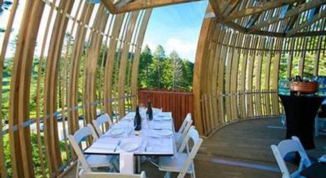 Yeni Zelenda'dada bir Peter Eising tasarımı :Yellow Treehouse