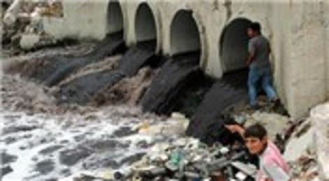 Ergene Nehri'nde canlılar kirlilikten olumsuz etkileniyor!