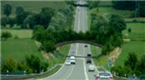 KGM, Gülek Boğazı'yla Akdeniz'i bağlayacak orman ekosistem köprüsünü inşa etti!
