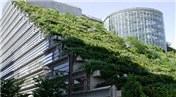 BETAM'a göre inşaat ve enerji sektöründe çevre koruması göz ardı ediliyor!