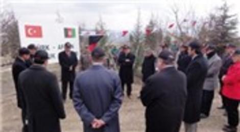 TİKA, Afganistan'ın kuzeyindeki Mezar-ı Şerif şehrinde dostluk parkı açtı!