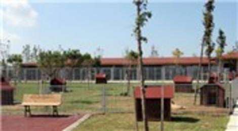 Esenyurt Belediyesi, hayvan bakım ve rehabilitasyon merkezini açtı!