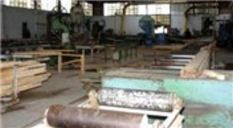 Düzce'de Abant Kereste Fabrikası icradan satışa çıktı! 2 milyon liraya!