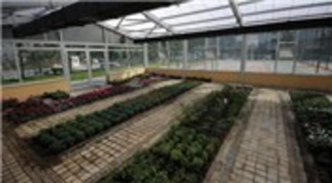 Bağcılar Belediyesi, Bilgi Evi Botanik Kulübü öğrencileri için sera yaptı!