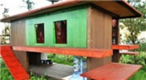 Bayrampaşa Belediyesi, kediler için özel barınak tasarladı! Kediler kombi ile ısınacak!
