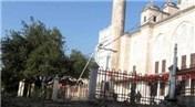 Fatih Camii'nden sökülen ağaçlar tekrar dikilecek!