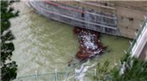Bursa Kent Konseyi, Çınarcık Barajı'nın koruma altına alınmasını istiyor!