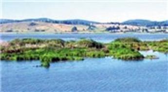 Ladik Gölü üzerinde bulunan adalar koruma altına alınacak!