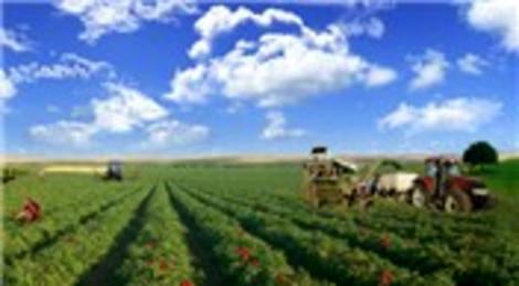 Harranova'nın Şanlıurfa'daki besi çiftliği Namet'e 15.5 milyon liraya satıldı!
