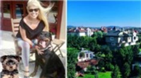 Zerrin Özer köpekleri için Bomonti'den Acarkent'te villaya taşındı!