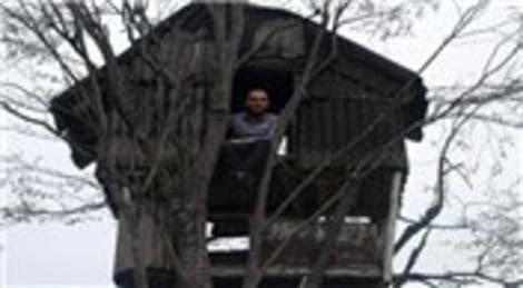 Rize'de ağaç dallarında kurulan evlere bir yenisi daha eklendi!