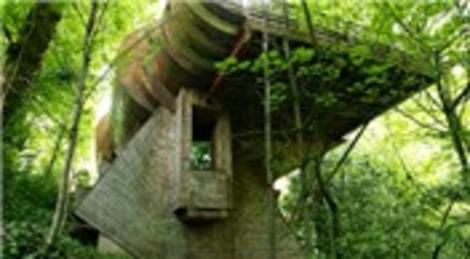 Robert Harvey Oshatz, ormanın içinde çocukluk hayali olan evi yaptı!