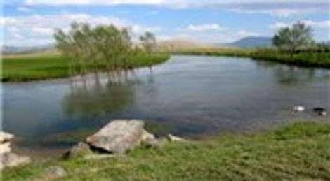 Van Çaldıran'daki Kaz Gölü DAKA'nın desteğiyle koruma altına alınıyor!