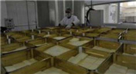 Bitlis Adilcevaz'da metruk bir bina süt fabrikasına dönüştürüldü!
