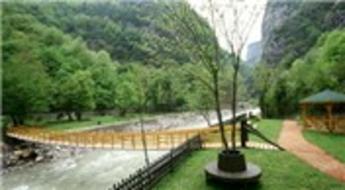 Karabük'te 835 hektar yandı 549 bin fidan geldi!