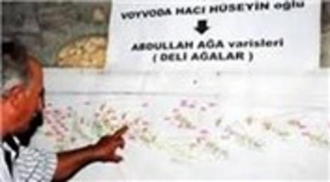 Muğla Bodrum'da 75 milyon liralık arazinin son sahipleri tapularına kavuştu!