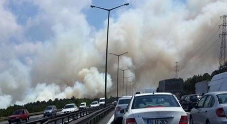Beykoz'da ormanlık alanda 5 ayrı noktada yangın çıktı!