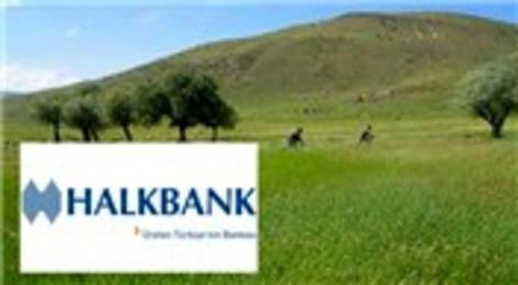 Halkbank'a gösterilen 450 milyon dolarlık teminat, Hazine arazisi çıktı!