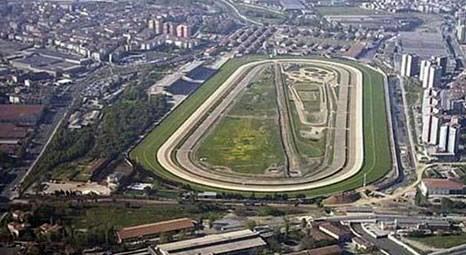 Nef İstanbul Şehir Parkı'na yakın iki arsasında yeni projeler yapacak!