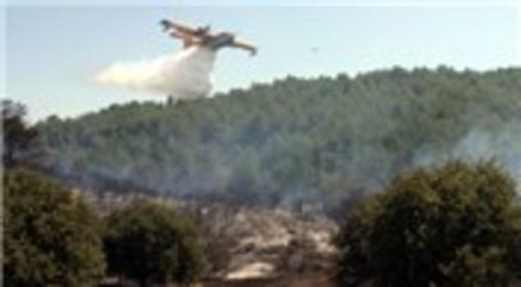 Muğla Bodrum Mumcular'da orman yangını çıktı!