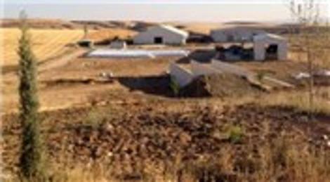 Ankara Akyurt'ta satılık süt sığırcılığı tesisi!