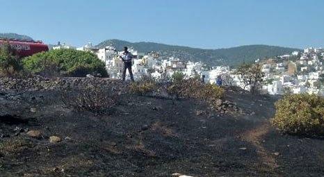 Bodrum'da 5 dönüm makilik alan yandı!