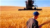 Tarım arazilerinde talep patladı, fiyatlar yükseliyor!